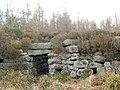 Tappoch Broch - southern side - geograph.org.uk - 1024967.jpg