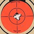 Target 223 Savage 10FP 5 shot closeup.jpg