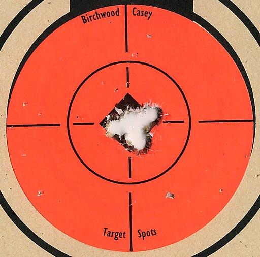 Target 223 Savage 10FP 5 shot closeup