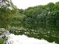 Teufelssee-bei-Thelkow-19-09-2008-004.jpg