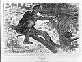 The Army of the Potomac – A Sharp-Shooter on Picket Duty – From a Painting by Winslow Homer, Esq. (Harper's Weekly, Vol. VII) MET MM10622.jpg