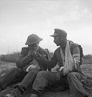 The British Army in Tunisia 1943 NA1344