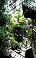 The Chinese Garden at Duke Gardens.jpg