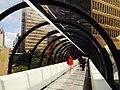 The Skywalk.jpg