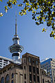 The Smith & Caughey's department store, Auckland - 0220.jpg