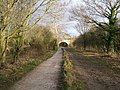 The Wirral Way, near Willaston - geograph.org.uk - 679320.jpg