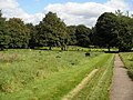 Thornhill Churchyard - geograph.org.uk - 975980.jpg