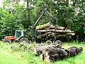 Timber tractor - geograph.org.uk - 1465278.jpg