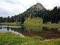 Tipsoo Lake and Yakima Peak (3884972685).jpg