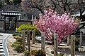Tomonoura (5826726553).jpg