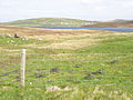 Towards Bixter - geograph.org.uk - 1297156.jpg
