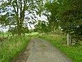 Track above Simonburn - geograph.org.uk - 255504.jpg