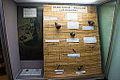 Traditional medicine exhibit, Blantyre Chichiri Museum.jpg