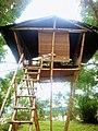Tree house herbal.jpg