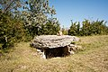 Tumulus-dolmens du Mont-de-Senne (2).jpg