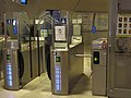 Turnstile for disabled people and standard one.jpg