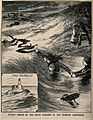 Two women rescuing a man from the sea off the coast of Swans Wellcome V0016539.jpg