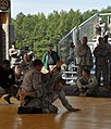 US Army 52256 Best Warrior Combatives.jpg