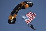 US Army Golden Knight.jpg