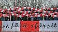 UTA Arad fans.jpg