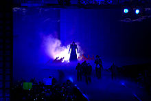 Undertaker Wrestlemania 29.jpg