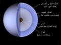 Uranus-intern-ar.png
