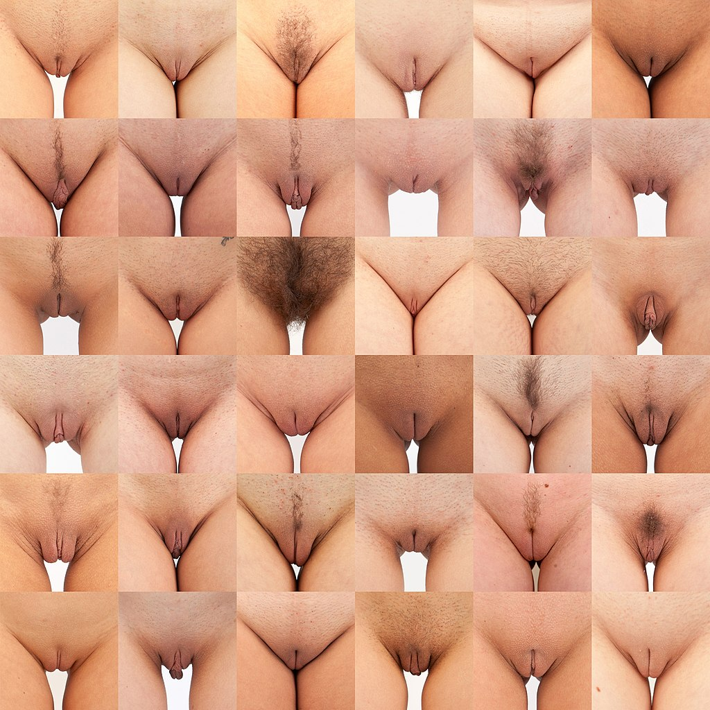 porn in vagina different of types