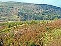 Valley of the Balloch Burn - geograph.org.uk - 263379.jpg