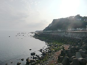 Tetrapod (structure) - Tetrapods protect an earlier sea wall in Ventnor, UK.