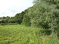 View north of Lintmill Bridge - geograph.org.uk - 504879.jpg