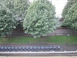 View of Barclays Bikes from Rooftop of Brompton Road (6121253510).jpg