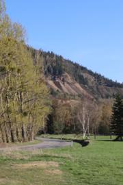 View of the nature reserve Blockschutthalden (BR 058) on the mountain Rammelsberg.png