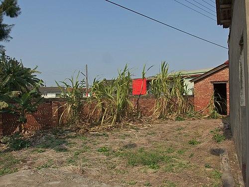 Views of Chiayi county-2139.jpg