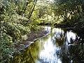 Vija pie Vijciema. 2002-06-01 - panoramio.jpg