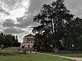 Villa Torlonia -cedro del Libano e Casino Nobile - 2.jpg