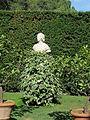 Villa i tatti, ext., giardino 11 busto.JPG