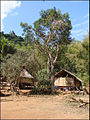 Village lao près de Pak Ou (4334068159).jpg