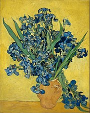 Vincent van Gogh - Irises - Google Art Project.jpg