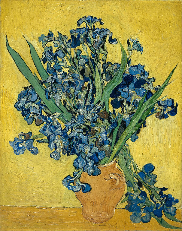 Vincent van Gogh - Irises - Google Art Project