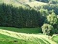 Vista del coll d'Ezkurra cap al nord P1270468.jpg