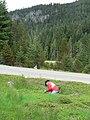 Volunteers weeding. slide (b171c76af62a4b3f9ae3d31c854053ef).JPG