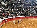 Vuelta al ruedo - Plaza Mexico.jpg