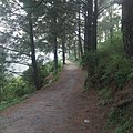 Walking track at Peer Sohawa, Margalla Hills.jpg