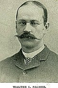 Walter Launt Palmer