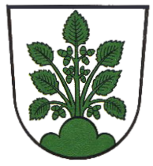 Haslach im Kinzigtal - Image: Wappen Haslach im Kinzigtal