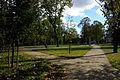 Warszawa - pałac wilanowski - park - ZJ001.jpg