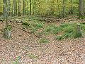 Weinsberg Haellische Strasse 7 20051023.jpg