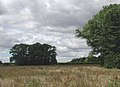 Willerby Low Road - geograph.org.uk - 511132.jpg