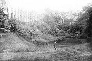 Windmill Hill Pit