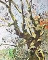 Winter Oak, painting by Lizza Littlewort.jpg